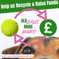 Recycling tennis balls at Woodbridge Tennis Club in Suffolk