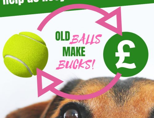 Help Club Cash in with Old Balls